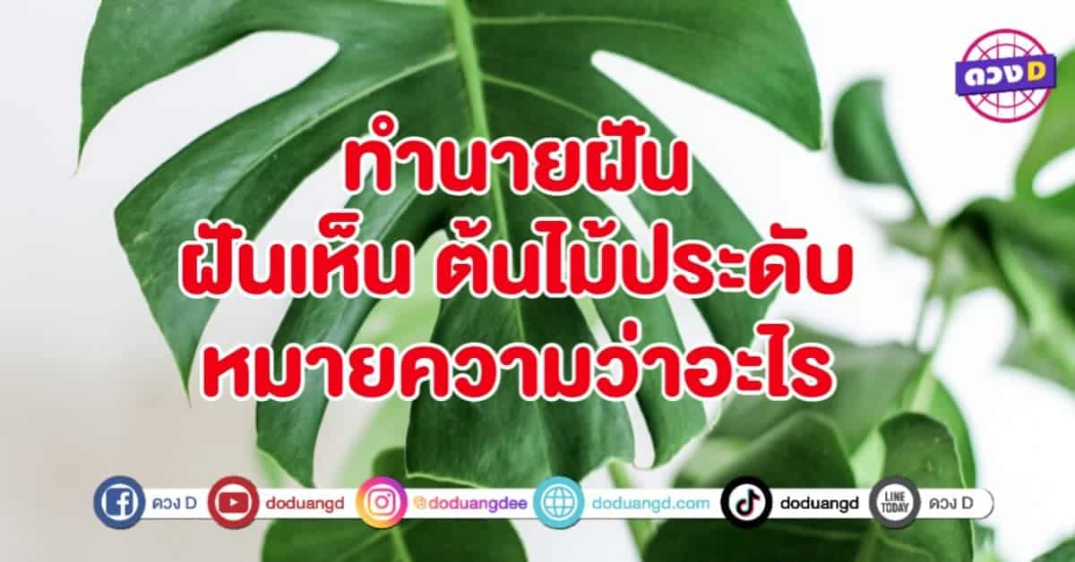 thumbnail_20210921_121315